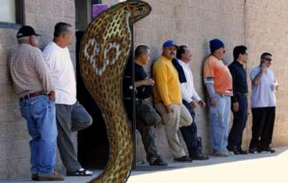 Cobra in line