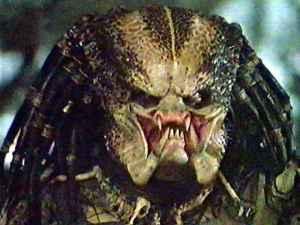 predator_large_17